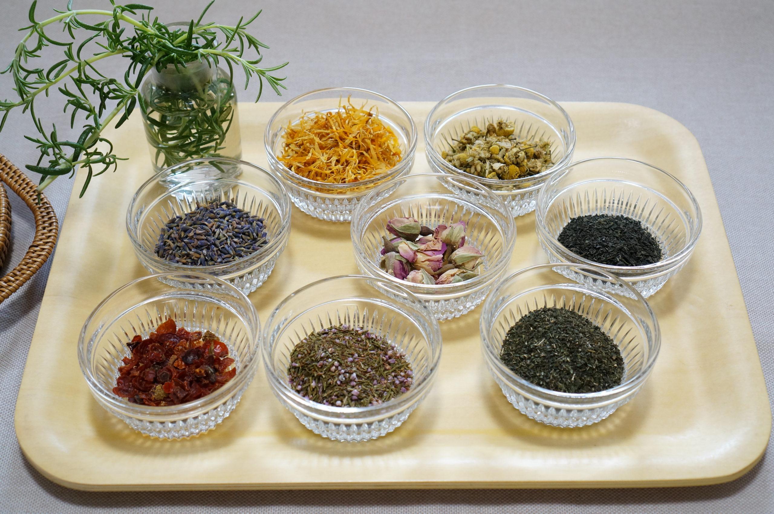 植物(Medical Herbs)